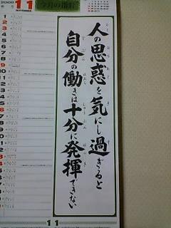 20081110213430.JPG